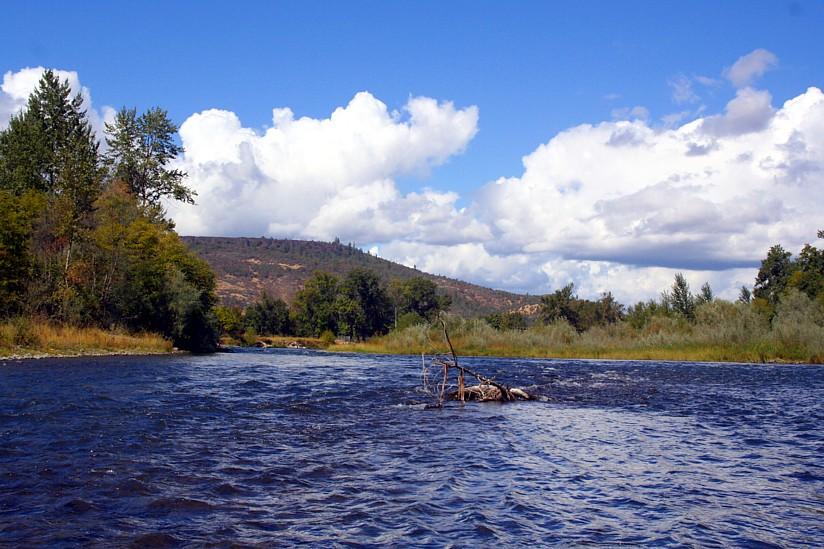More rogue river photos rogue river steelhead rogue for Rogue river oregon fishing