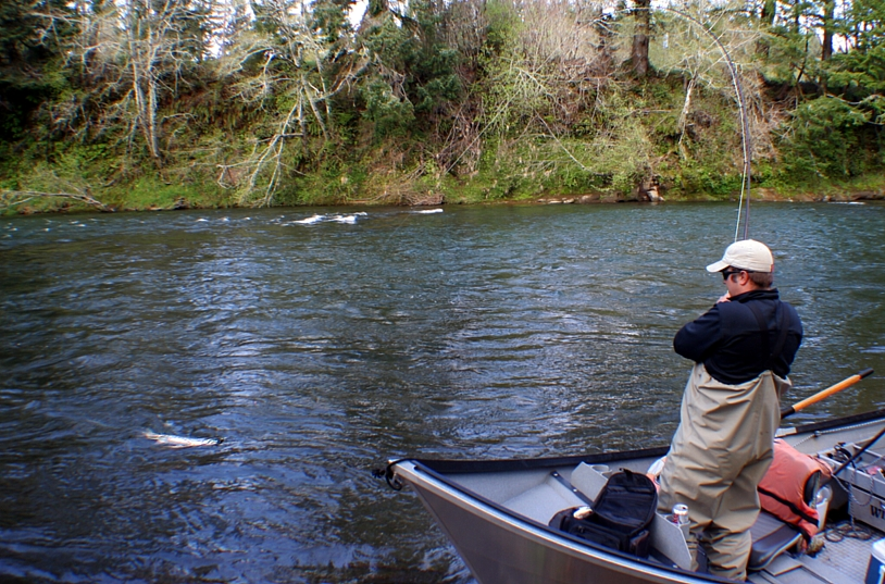 Locating steelhead for Mckenzie river fishing