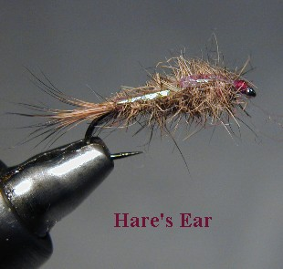 Hare's Ear / McKenzie River fly fishing / McKenzie River fly fishing guide