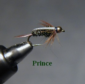 Prince / McKenzie River fly fishing / McKenzie River fly fishing guide